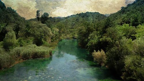 trees texture river landscape july croatia fluss landschaft kroatien 2016 textureart nikond700 andykobel cetinacanyon bukomiš