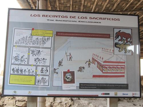 La Huaca de la Luna: les sacrifices humains.