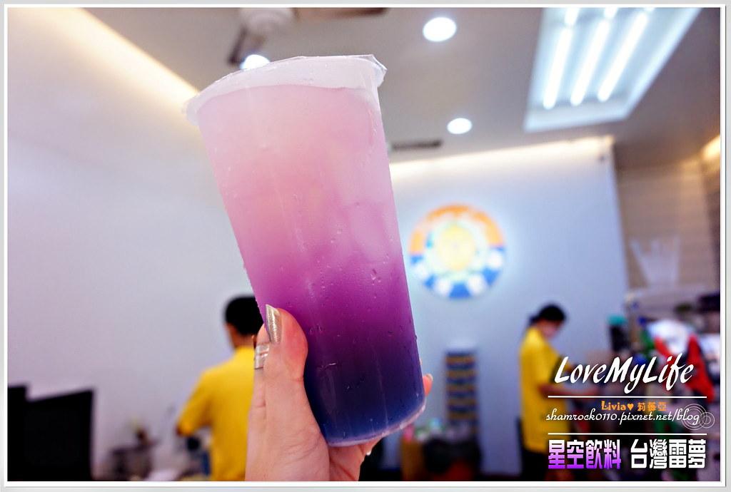 台灣雷夢 - 24