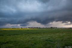 Convection 2013