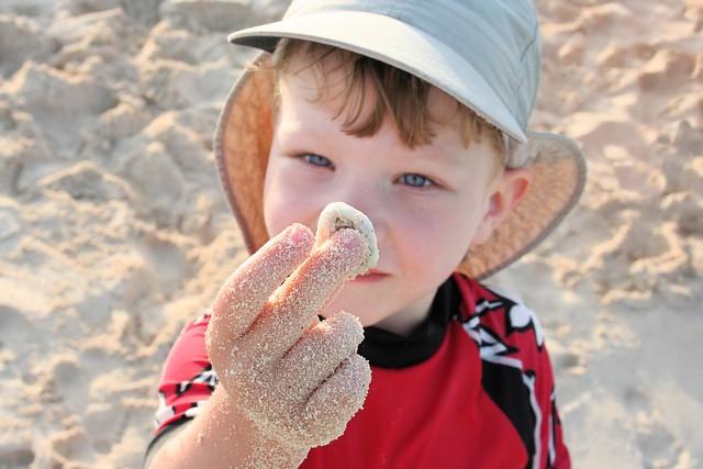 Declan Found A Seashell