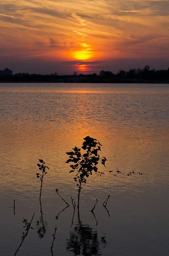 sunset silhouette croatia hrvatska zalazak sigma70200mmf28ex pentaxk5 jezeročiče vedranvrhovac