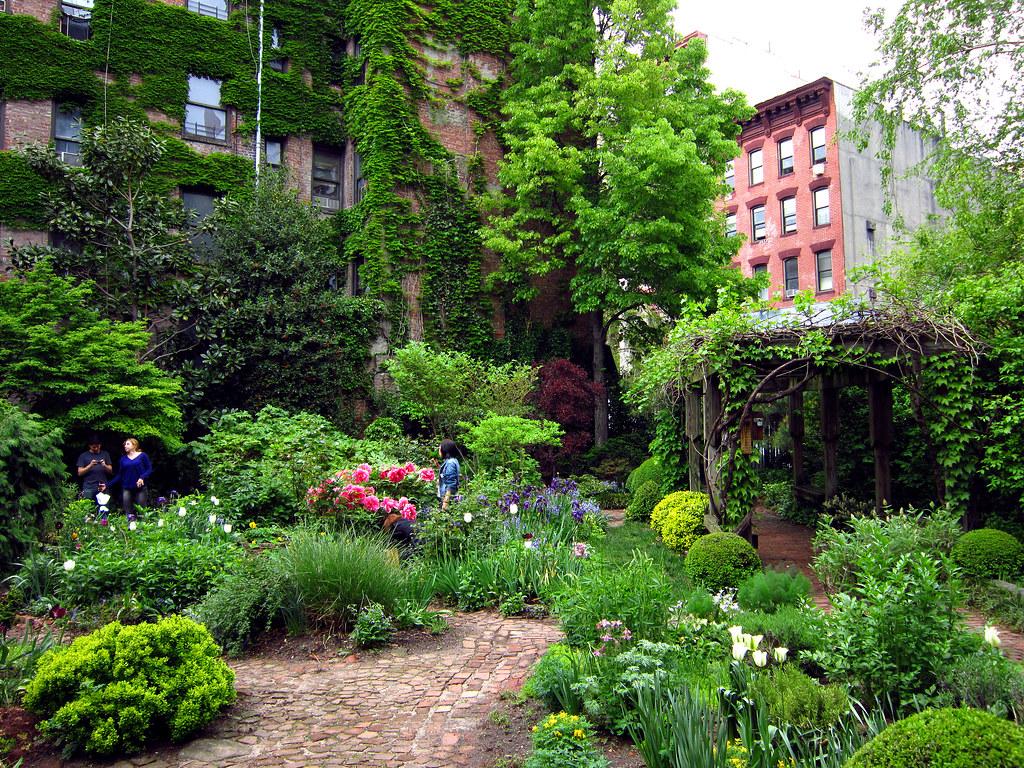 6BC garden