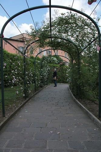 Roseto comunale: per una passeggiata in mezzo alle rose