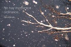 no_hay_momentos_ordinarios