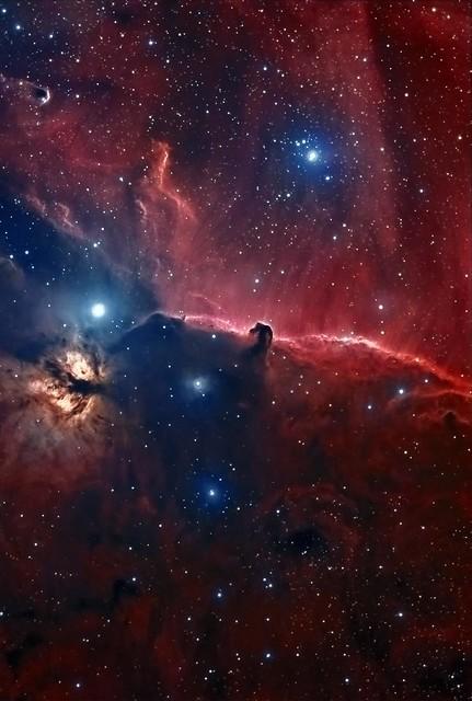nebula in orion the horsehead nebula - photo #4
