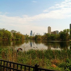 The view yesterday. I love Chicago in the summer. #latergram