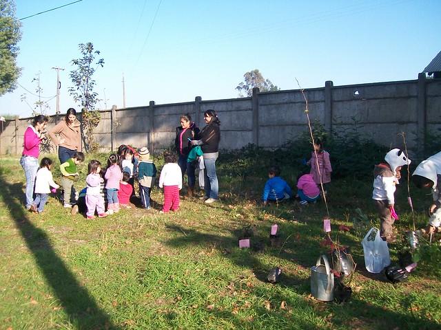 Entrega de plantas a Jardín Infantil We Antu por parte del CGNA. Temuco.