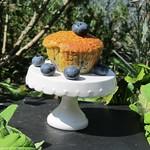 Rezepte mit Blaubeeren: ©Baker & Spice Blaubeermuffins (2)