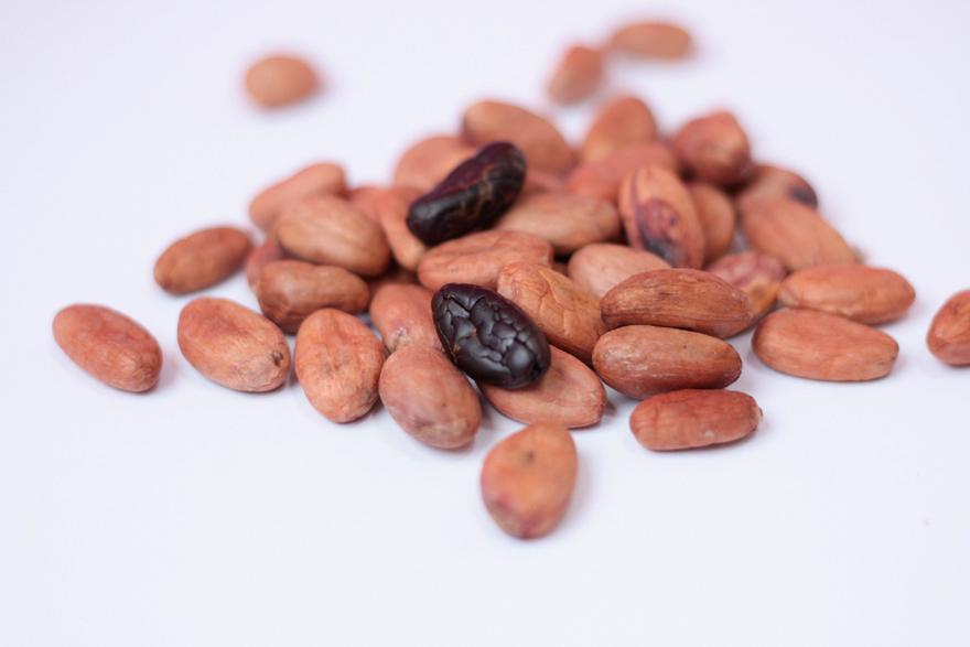 feve-de-cacao