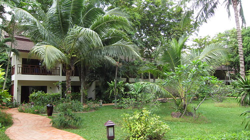 Koh Samui Paradise Beach Resort-Garden (3)