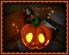 31 Days of Sally
