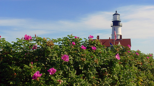 At Portland Head Light, Cape Elizabeth, Maine by nelights