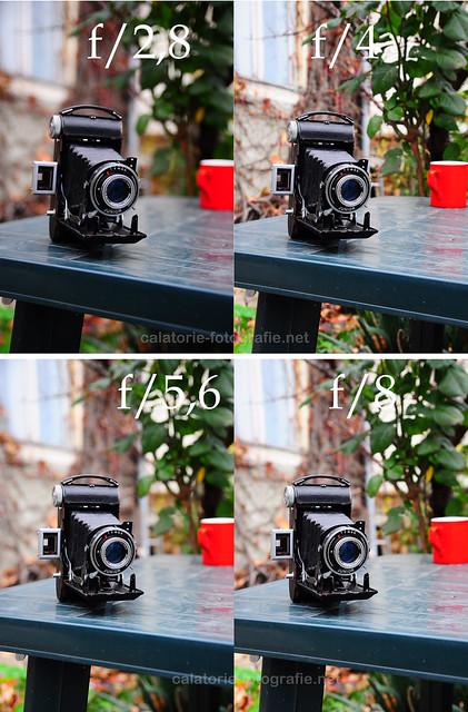 Tamron 17-50 mm f/2,8 - un obiectiv zoom cu diafragma constanta la pret abordabil 10932898465_80eaa06167_z