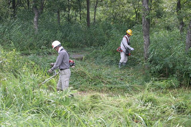 草刈り精鋭隊のおふたり.作業が早い!