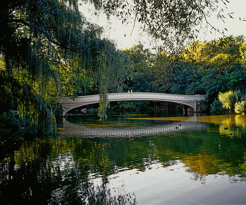 Bow Bridge in Central Park, NY