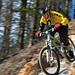 """Glenlivet MTB Trails - """"Gully Plunge"""" by Anthony Round"""