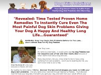 Dog skin solutions – symptoms, and natural treatment for dog skin diseases