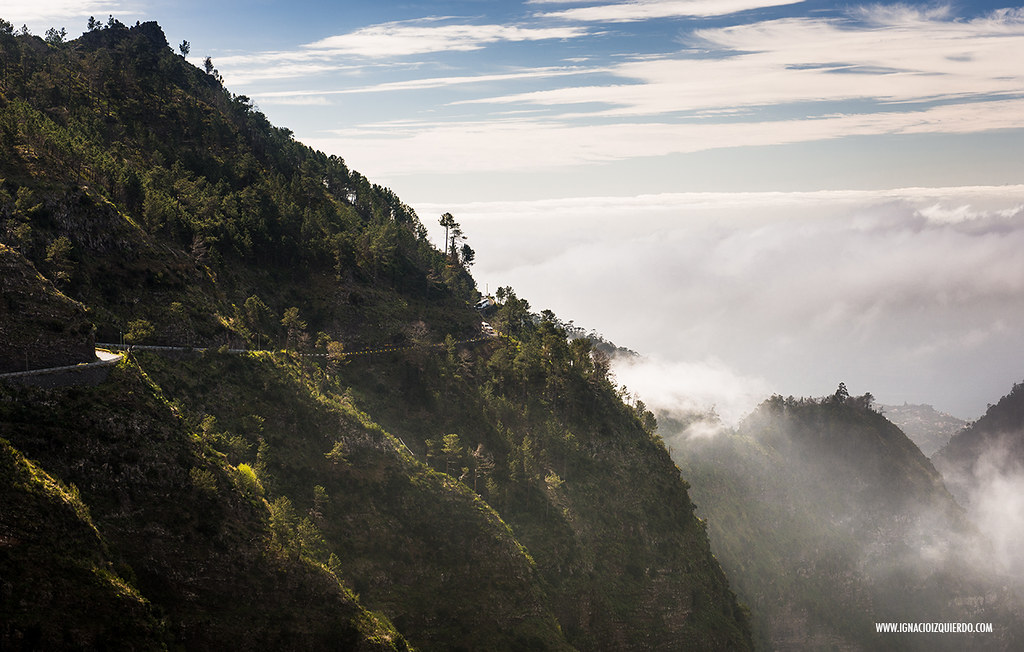 Madeira 20