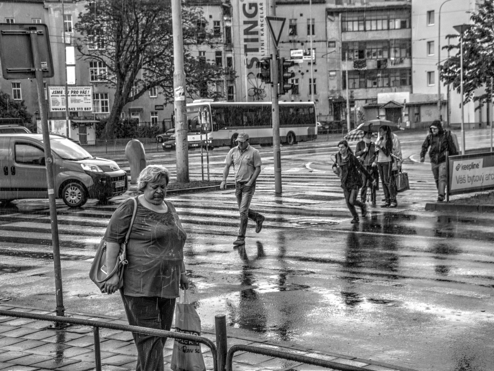 In the Spring Rain 6