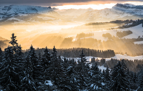 morning trees winter sun snow mountains alps cold colour tree nature fog clouds forest sunrise landscape schweiz switzerland nikon europe dorf village nebel suisse swiss dramatic d750 bern alpen sonnenaufgang sunbeam winterwonderland emmental 2470mm gehrig chuderhüsi mainone chuderhuesi mainonech christiangehrig