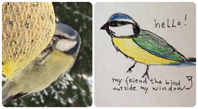 Hello Birdie my friend