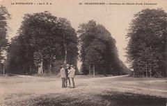 16. Champsecret - Carrefour de l'Étoile (Forêt d'Andaine) (c.1905)