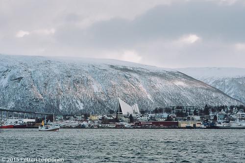 Tromssa (50)