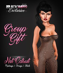 GROUP GIFT - NET CATSUIT