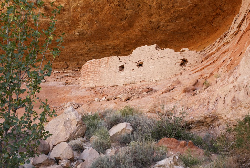Canyons of the Ancients NM