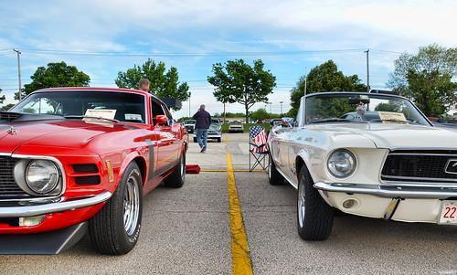 Classic Mustangs