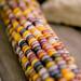 Colors by Eddietherocker