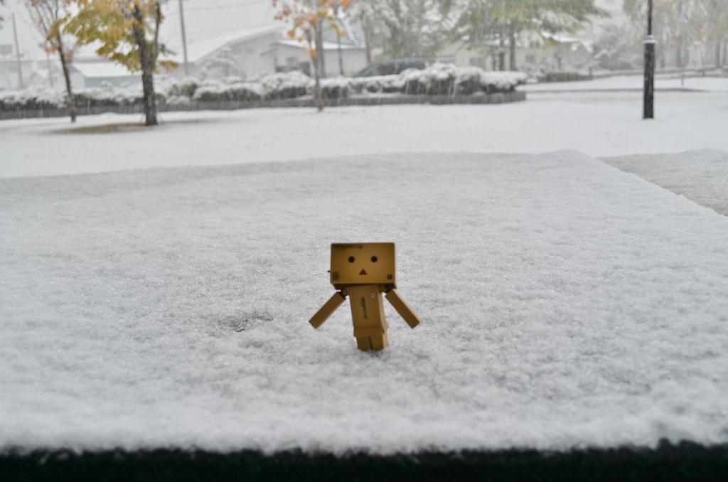 2013年初雪&初積雪 (1)