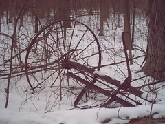 Wreck of old farm machinery
