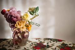 Flowers 2 - IMG_1582