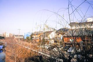 1229-Japan
