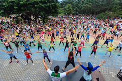 zumba, entertainment, physical fitness, dance, person, physical exercise,