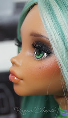 OOAK Monster high custom / repaint Clawdeen Wolf