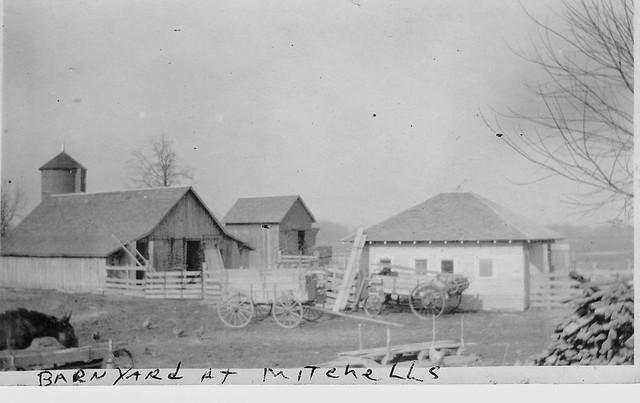 Mitchell's Barnyard