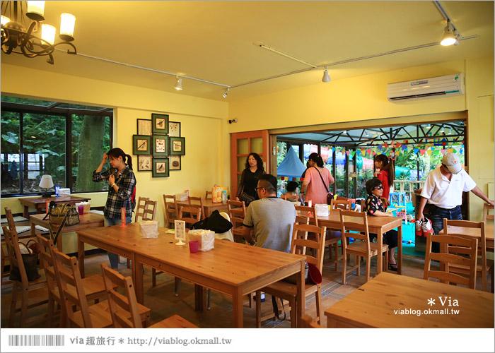 【新竹景點推薦】森林鳥花園~親子旅遊的好去處!在森林裡鳥兒與孩子們的樂園18