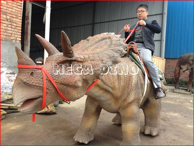 Tame Triceratops