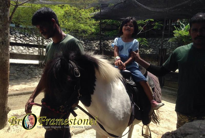 Pony Ride Farm in The City, Seri Kembangan - Kelab Blogger Ben Ashaari