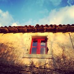 Quand il neige partout, chez nous, on profite des heures de soleil qui font des #poitoucharentes un terroir exceptionnel #deuxsevres - Photo of Sainte-Soline