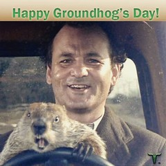 #Groundhogs #Groundhog #GroundhogDay #2015 #Holiday #HappyGroundhogsDay