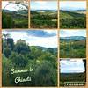Summer in Chianti ! #Tuscany #chianti #tuscanylandscape #tuscancountryside #chiantiregion #tuscany_landscapes #tuscanyholiday #toscanamiasisters #adayintuscany #walkingintuscany #tuscanygram #tuscanygramers #instatuscany