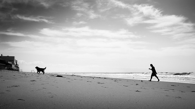 Walking the dog - Malibu, United States - Black and white street photography