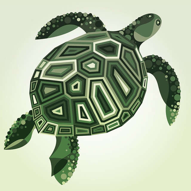 Wildlife Series : Sea Turtle.
