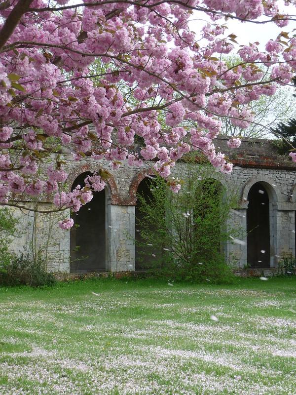 Seminary in Sommervieu