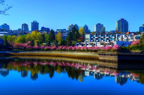 Spring Comes to False Creek