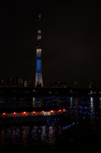 Tokyo Hotaru Light Symphony 2013-27